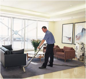 Removing Carpet Pet Stains Pet Stain Removal Services Elgin